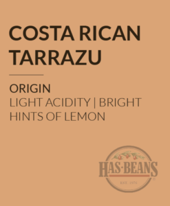 Costa Rican Tarrazu SHB Coffee