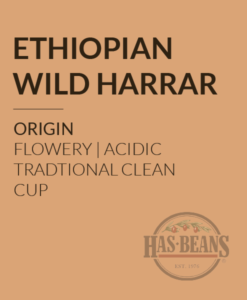 Ethiopian Wild Harrar Coffee